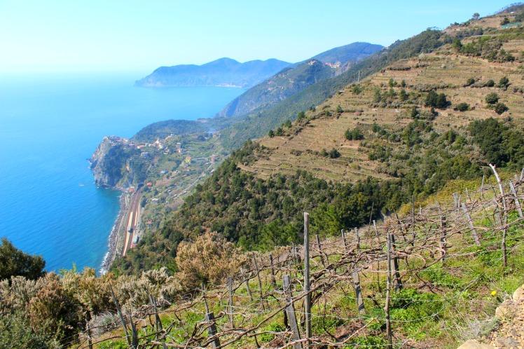 View to Corniglia, Cinque Terre, BackpacktoBeyond
